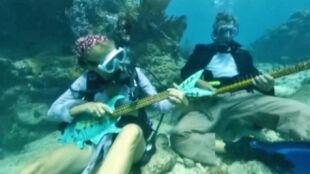 """Niezwykły koncert w głębinach. """"Ryby kołyszą się w rytm muzyki"""""""